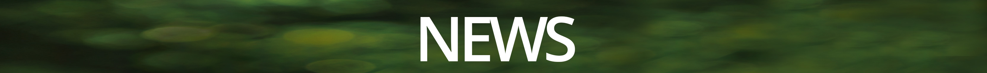 news-banner-green-center